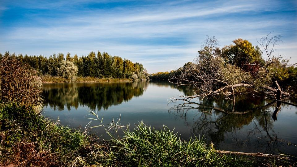 Sonhar com rio sujo