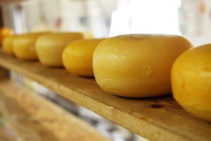 Sonhar com queijo