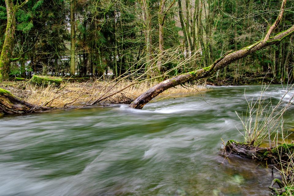 Sonhar com rio limpo