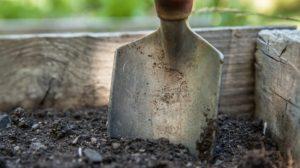Sonhar que está cavando terra