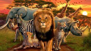 Sonhar com animais