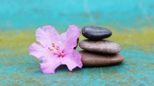 Terapia holística